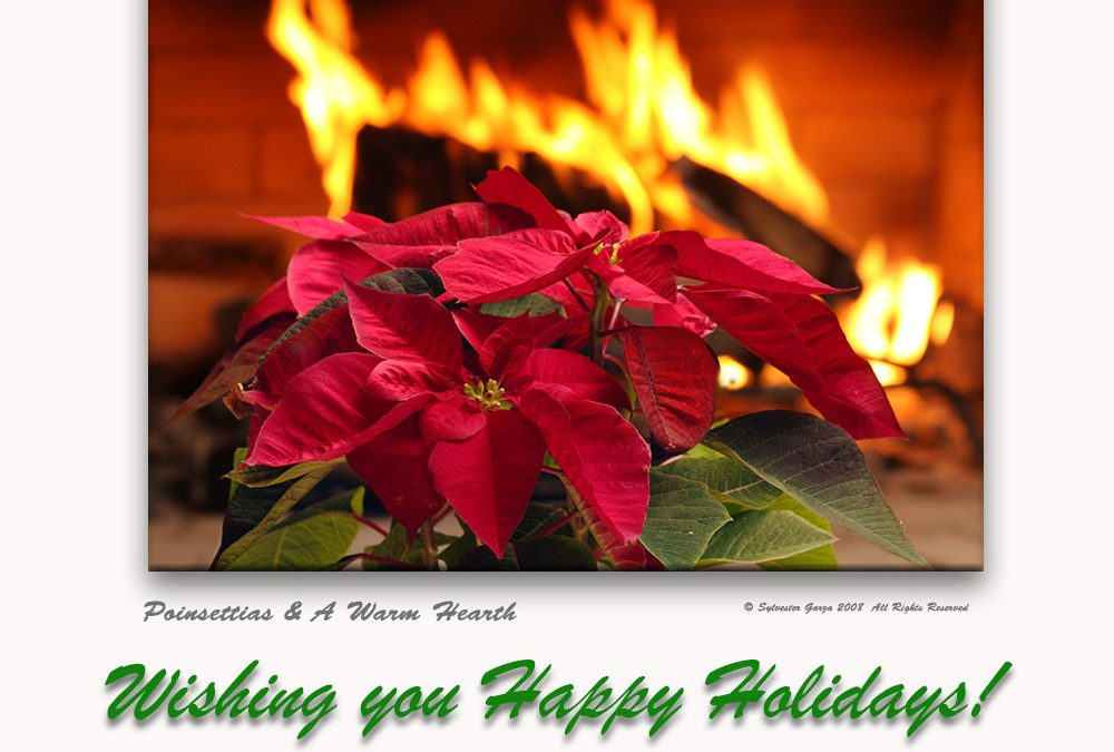 Poinsettias & a Warm Hearth . . .Happy Holidays